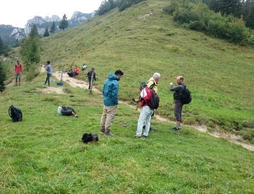 In Unterföhring gibt es Wandersprinter!